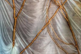 Casuta din copac – Complex Harmonie, de mers!